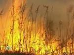 В МЧС предсказывают повышение количества природных катаклизмов в 2007 году