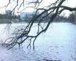 На Калининград надвигается сильнейший шторм за последние годы