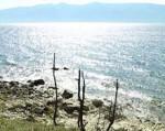 Экологические проблемы Байкала обсудят на выставке «Байкалтур»