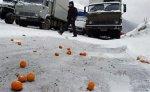Транскам освобожден от автомашин с мандаринами из Грузии