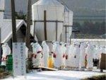 В Японии, Индонезии и Таиланде зарегистрировали новые вспышки птичьего гриппа