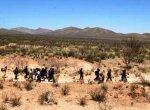 Водитель получил пожизненное заключение за смерть иммигрантов