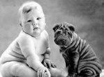 Собаки влияют на здоровье хозяев