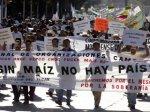 В Мексике прошла миллионная демонстрация против повышения цен на продукты питания