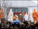В Южной Корее снова найден птичий грипп