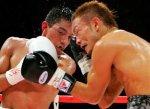 Японские боксеры станут полицейскими
