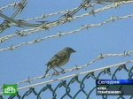 Гуантанамо хранит свои секреты