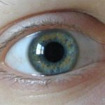 Радужная оболочка глаза определяет характер