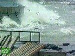 Корабль не обойдется без помощи спасателей