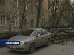 В Ростовской области устраняют порывы линий электропередач