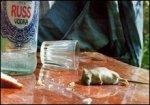 В крови жителя Беларуси зафиксировано нереальное содержание алкоголя