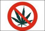 Учительница по ошибке отправила SMS полицейскому с просьбой продать марихуану