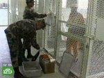 Секретные тюрьмы ЦРУ обрастают скандалами