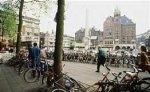 В Голландии на местных выборах лидирует правящая коалиция