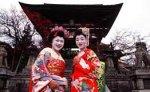 Через неделю в Японии зацветет сакура и начнется период любования ею