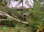 На Австралию обрушился циклон: трое погибших