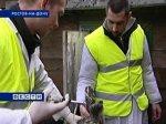 В Ростове от птичьего гриппа привито 70 процентов домашней птицы