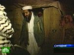 Охотники за скальпами вышли на след Бен Ладена