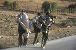 Пятерых похищенных европейцев передали властям Эритреи