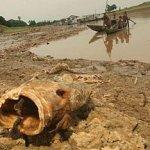 Человечеству угрожает глобальная жажда