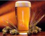 Бесплодие от пива