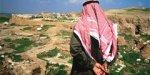 Сирия готовится стать страной массового туризма