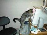 Советы работающим на компьютере