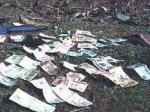 Тысячи долларов вытаскивали из реки сетями