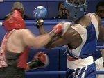 Федерация бокса ожидает подтверждения о возвращении ЧМ в Москву