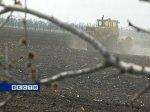 На юге Ростовской области завершается посевная компания