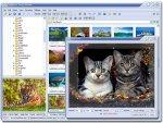 FastStone Image Viewer 3.1: бесплатный вьювер