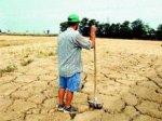 Засуха может оставить Италию без урожая
