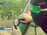 Военизированное крыло ХАМАСа официально отказалось от перемирия с Израилем