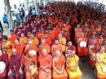 Буддисты не побоялись привести слонов на митинг