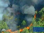 За пожарами на Алтае следят из космоса
