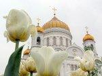Отпевание Ростроповича пройдет в храме Христа Спасителя