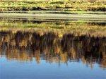 Вышедший из берегов Енисей затопил село под Красноярском