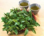 Зеленый чай поможет при артрите