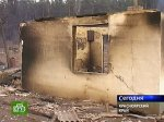 Под Красноярском на пожарищах поймали мародера