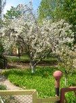 Весна на БКМПО