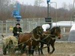В Белоруссии снижены цены