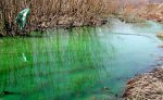 Подтверждено содержание в реке Кирпичной красителя для теплосистем