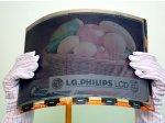 LG.Philips создала первую в мире цветную электронную бумагу формата A4