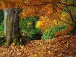 Уход за кожей зимой и осенью