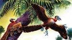 В мире птиц. От каких животных произошли птицы?
