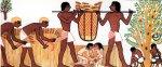 Почему кочевники осели на берегах Нила?