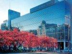 О замедлении роста мировой экономики всемирный банк предупредил