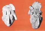 Почему многие индейцы майя стремились к жертвенной смерти?