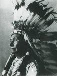 Какие индейские племена жили в Большом Бассейне и на Плато?