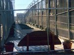 В тюрьме Балтимора произошла драка заключенных.